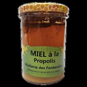 Miel à la Propolis artisanal de Vendée